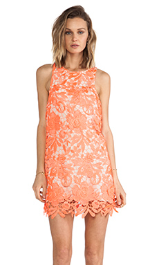 Cameo Spellbound Dress in Neon Tangerine