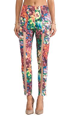 Casper & Pearl Sophmore Pants in Floral