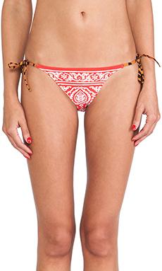 Charlie by Matthew Zink Charlie String Bikini Bottoms in Tiger Wave Multi