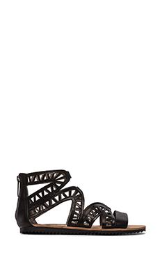 Circus by Sam Edelman Shela Sandal in Black