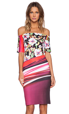 Clover Canyon Botanical Wave Off the Shoulder Dress in Multi