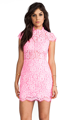 DV by Dolce Vita Behula Dress en Rose