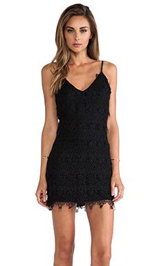 Dolce Vita Byzantine Dress in Black