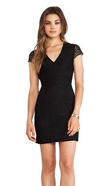 DV by Dolce Vita Carese Dress in Black