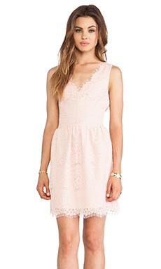 DV by Dolce Vita Raidne Dress in Blush