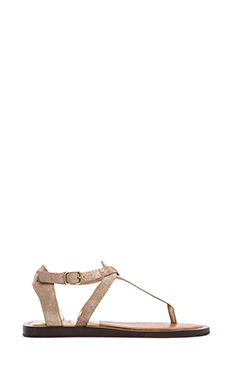 Dolce Vita Fabia Sandal in Light Gold