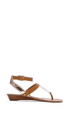 DV by Dolce Vita Vasni Sandal in Cognac