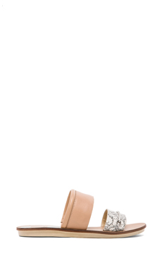 Dolce Vita Neary Sandal in Nude