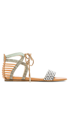 Dolce Vita Ashtyn Sandal in Mint Multi