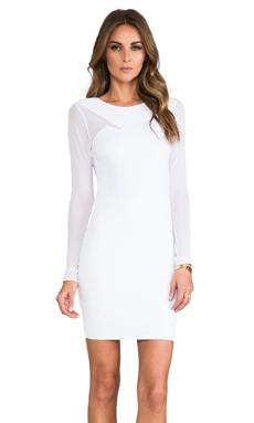 Donna Mizani Long Sleeve Splice Dress in Frost