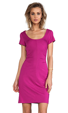 Diane von Furstenberg Bally Dress in Orchid Bloom