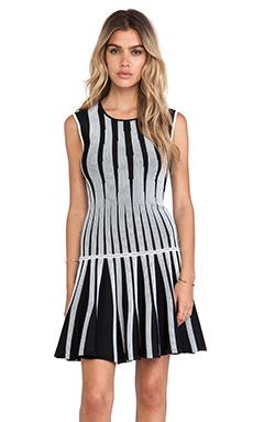 Diane von Furstenberg Celine Tank Dress in Black & White