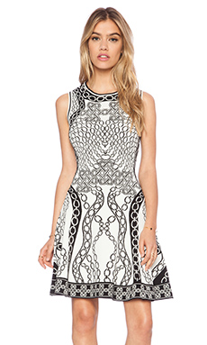 Diane von Furstenberg Fit and Flare Dress in Ivory & Black