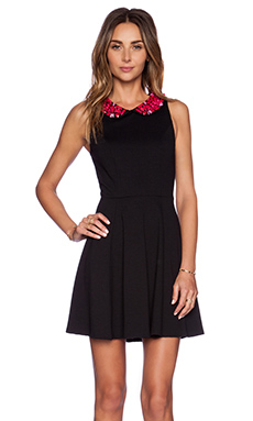 Eight Sixty Embellished Collar Ponte Dress in Black & Fuschia