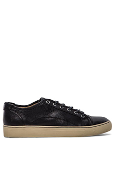 Frye Justin Low Lace Sneaker in Navy