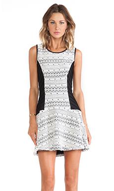 Greylin Evlin Knit Dress in Black & White