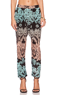 Gypsy 05 Printed Pant in Black