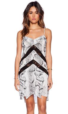 Indah Amuse Panel Lace Slip Dress in Snake