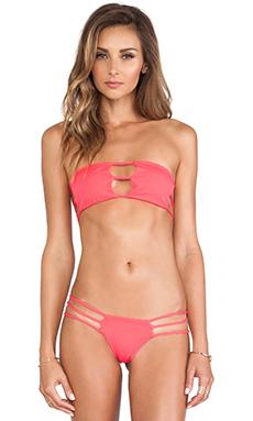 Indah Bay Bikini Top in Punch