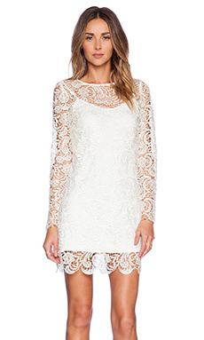 JAGGAR Dove Dress in White Lace