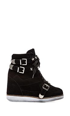 Jeffrey Campbell EXCLUSIVE Bonn Star Suede Wedge Sneaker in Black
