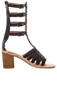 Jeffrey Campbell Klamath Embellished Sandal in Black