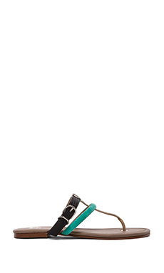 Joe's Jeans Marchele Sandal in Black & Aqua