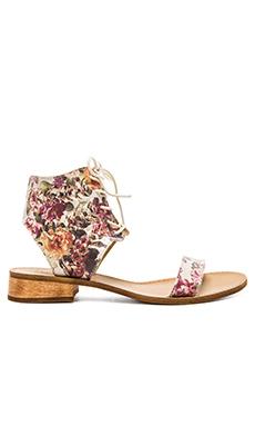 Latigo Rose Sandal in Floral