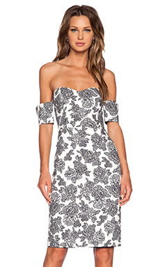 Line & Dot Rose Stroke Tube Dress in Noir Bloom