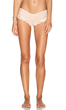 Les Coquines Evi Lace Cheeky Underwear in Coquette