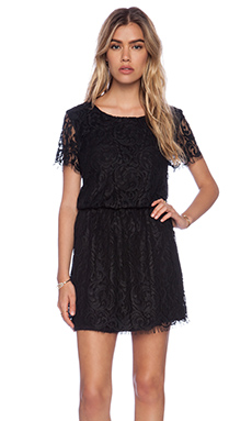 LIV Dorothy Lace Dress in Black