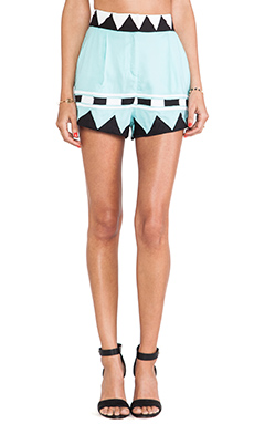 Mara Hoffman Applique High Waisted Shorts in Multi