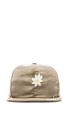 Mark McNairy New Amsterdam Cinch Back Cap in Slate Cord w/ Daisy