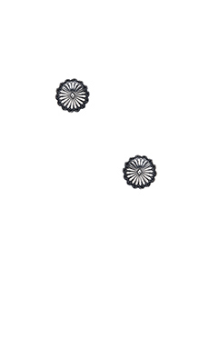Natalie B Jewelry Mojave Flower Stud Earrings in Silver
