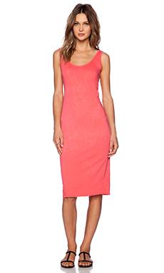 Nation LTD Lake Havasu Dress in Paradise Pink