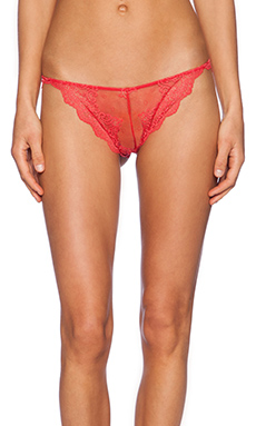 Only Hearts Lace Thong in Gold Fish