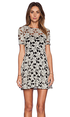 Otis & Maclain Alex Dress in Lace