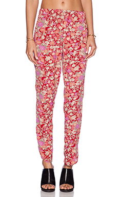 Otis & Maclain Track Pant in Red Floral