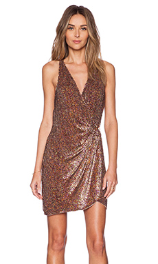 Parker Black Reina Sequin Dress in Multi