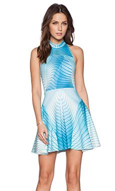 Ringuet Aurora Dress in Print