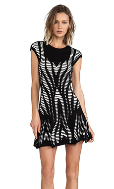 RVN Cutout Illusion Skater Dress in Black & White