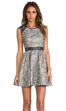 RACHEL ZOE Marley Flare Dress in Metallic Multi