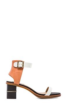 RACHEL ZOE Colbie Sandal in Persimmon