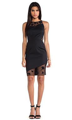 Sachin & Babi Clover Dress in Black Dahlia