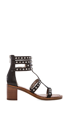Sam Edelman Dion Heel in Black