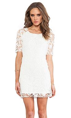 SAM&LAVI Anna Lace Dress in Off White