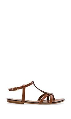 Seychelles Transfer Gladiator Sandal in Cognac