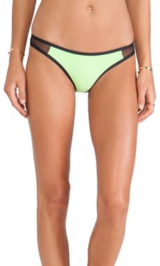 TAVIK Swimwear Jayden Bikini Bottom in Citrus