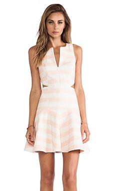 Tibi Blanket Stripe Dress in Pale Blush
