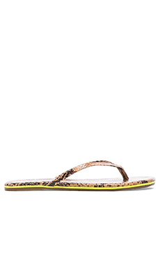 TKEES Sandal in Sizzle Snake